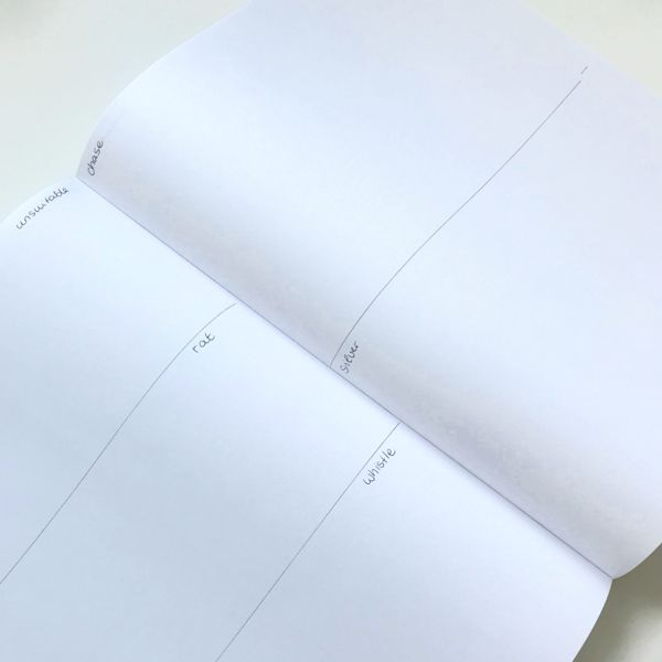 DIY book with 500 drawing prompts (divided into sections)