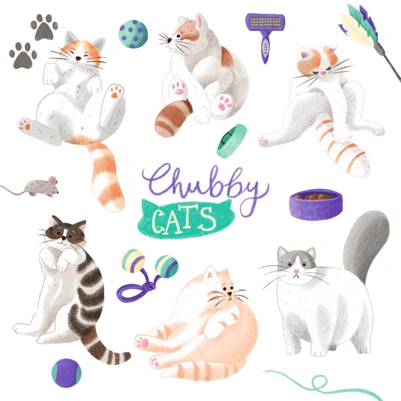 Sechs verschiedene dickliche Katzen, umringt von Katzenspielzeug.