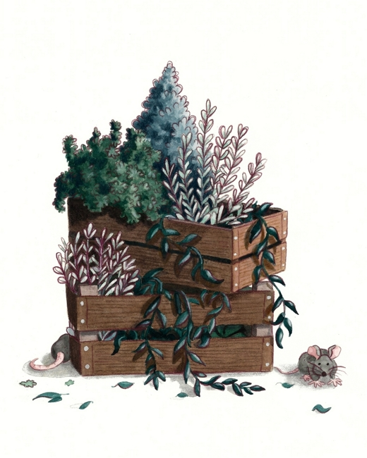 An illustration of two wooden boxes stacked on top of each other. They are filled with green plants. On the ground you can see two grey mice.